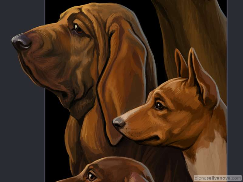 Hounds - Art of Elena Selivanova